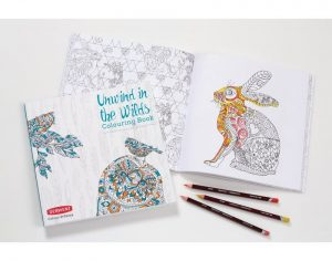 unwind-in-the-wilds-with-pencils